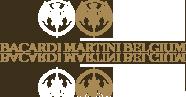 logo-belgium